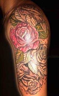 gallo_album_roses sleeve