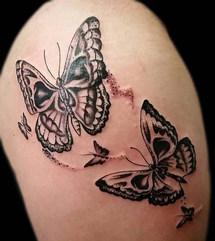 Gallo_butterfly skulls