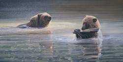Playful grizzlies