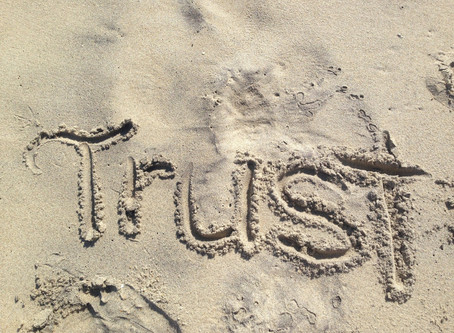 Trust: Human and Dog