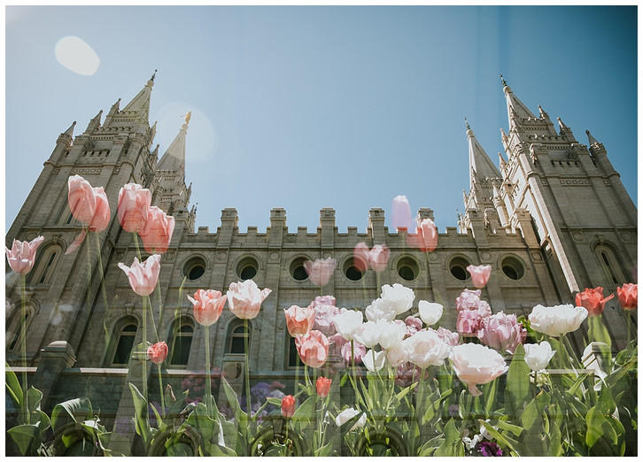 Summer + Chad: SLC Temple Wedding and Noah's Event Center