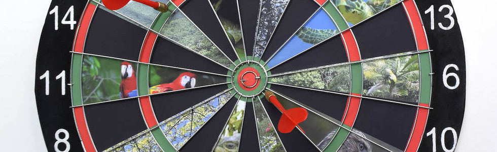 Antropocene, 2018 Intervened dart board 15.74 inches Ø x 2.36 inches. 40 cm Ø x 6 cm.  Work that confronts the difficulty of viewing this phenomenon as a whole while activating our participation in the dilemma.