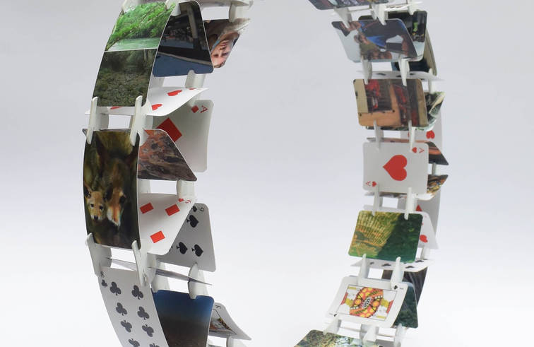 Wheel © 2017 Set of modified card deck with photographs of endangered nature, species and the social/political Mexican sphere. 19.68 x 19.68 x 3.14 inches. 50 x 50 x 8 cm.