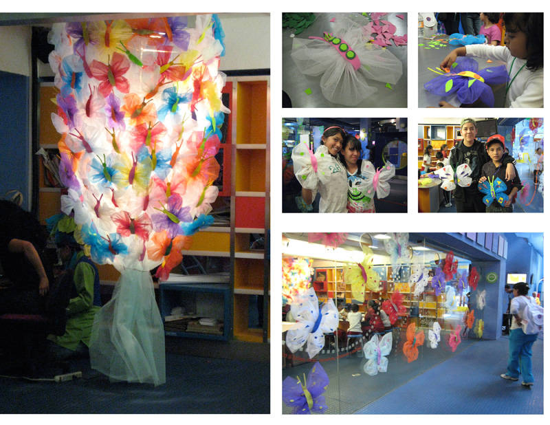 Metamorphosis, 2010 Proyect held at the Papalote Children's Museum. Mexico.