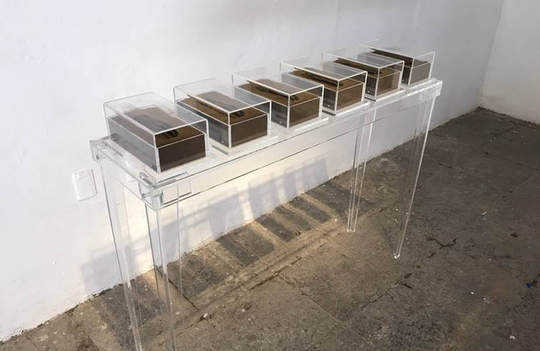 Experimental fase, 2015-2016 6 sculptures in resin, soil and acrylic and acrylic table. 4.33 x 11.53 x 7 inches each. 11. 5 x 29.3 x 17.8 cm. each.
