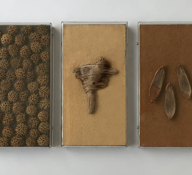 Sole horizon © 2018 Assembly of natural materials found in Alaska, Morroco, Mexico and Puerto Rico. 12 x 6.10 x 1.96 inches each. 30.5 x 15.5 x 5 cm. each.