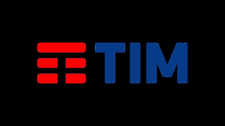 TIM.png