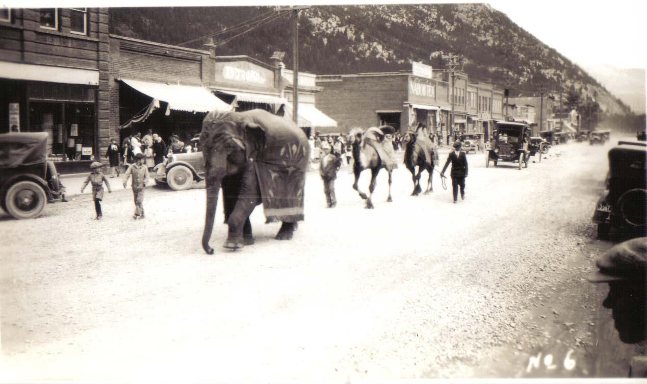 2005.001.1923 Blairmore   circus parade incl elephant and camels