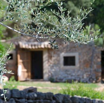 Detail entrance Cottage