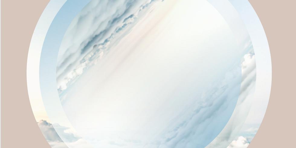 RESET GO - online start april 2020