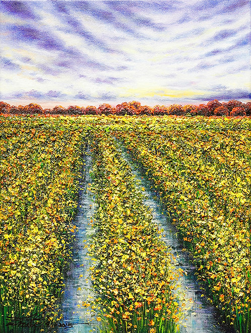 Harvests Delight