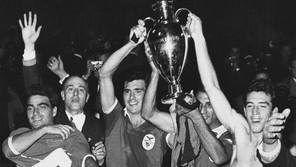 O meu Benfica