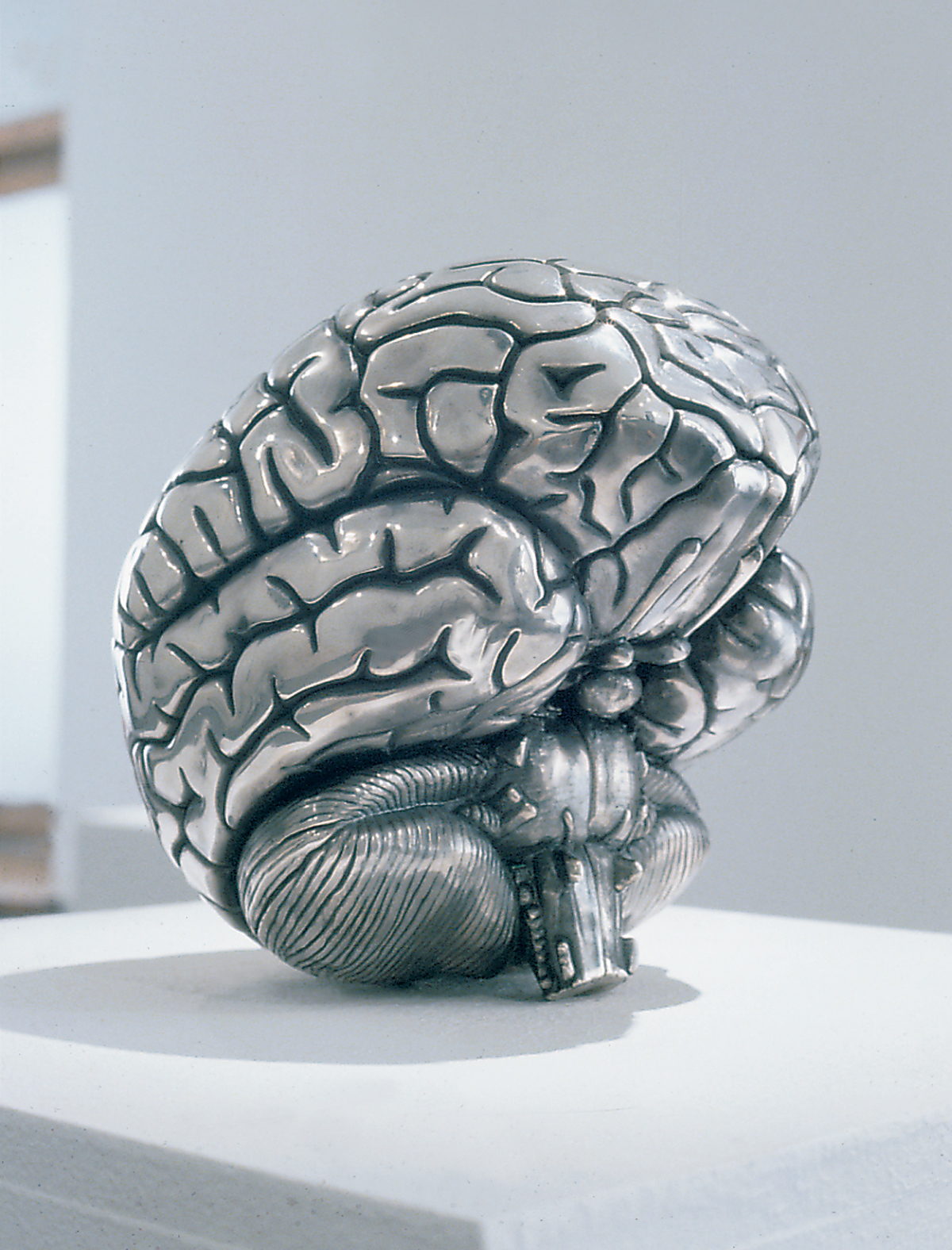 Nude Brain
