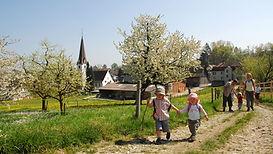 TVFormat 16_9-Hagenwil_Bluest.jpg