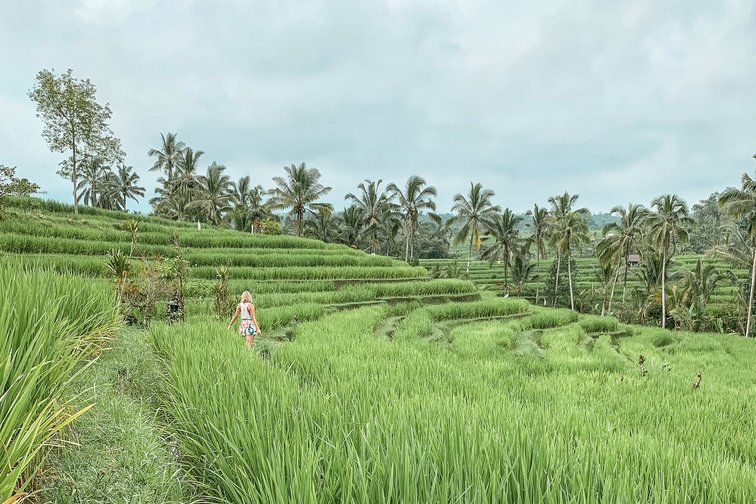Girl in the middle of a rice terrace