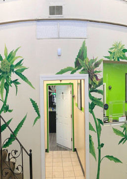 Mirjuana Plant Mural