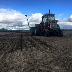 The Frozen Farmer planting 2 Row Barley