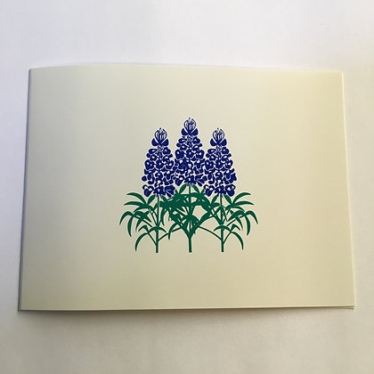 Notecards Bluebonnet