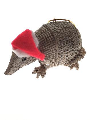 Santa Hat Wearing Armadillo