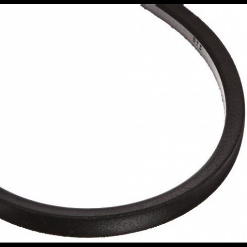 Belt (#2050004)