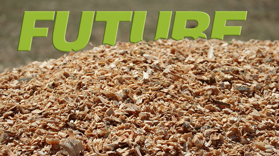 Chipper made wood chips with letter future on back