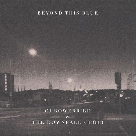 486 THFN CJ Bowerbird 04.jpg
