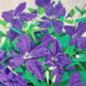 purple%20rain%20for%20cards_edited.jpg