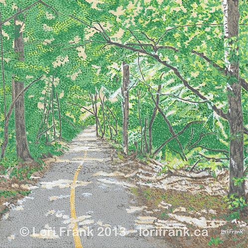 A Jess Summer Trail