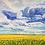 Thumbnail: Oh Amazing Skies