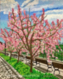 Cherry Blossoms painting of Victoria Promenade in Edmonton by local artist Lori Frank