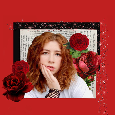 Mystery Rose Premier