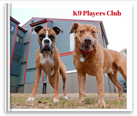 K-9 Players Club
