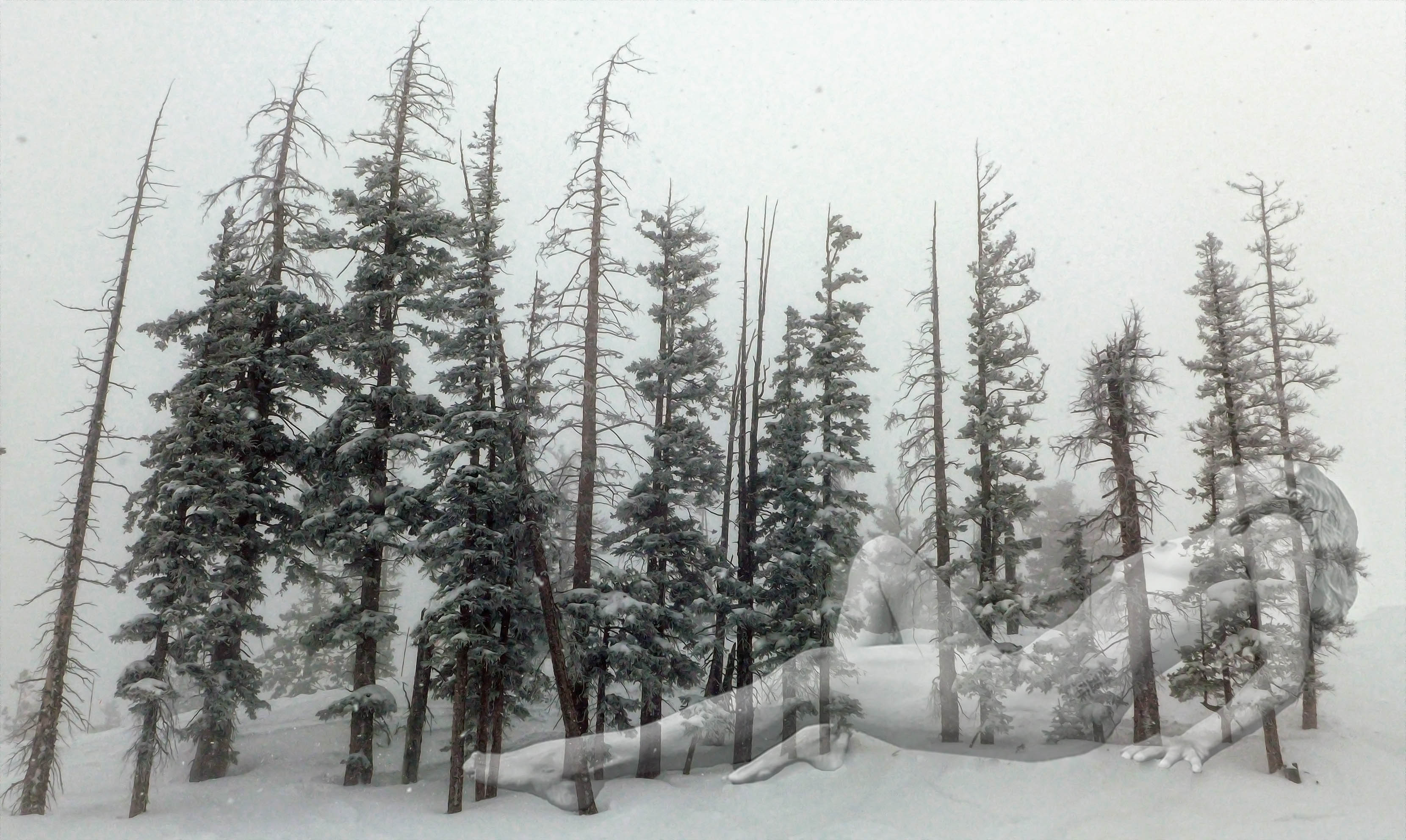 Lorelei Skis the Trees