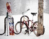 tellubike poster.jpg