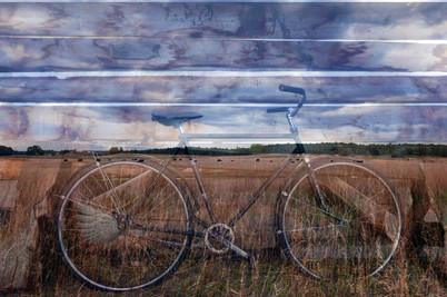 winged+austrian_bike_L1290587_0777.jpg
