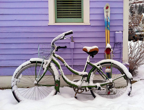 Green Bike, Purple House