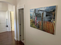 Welcome to Townie, Kamruz Gallery, Gondogola, Telluride Photographer