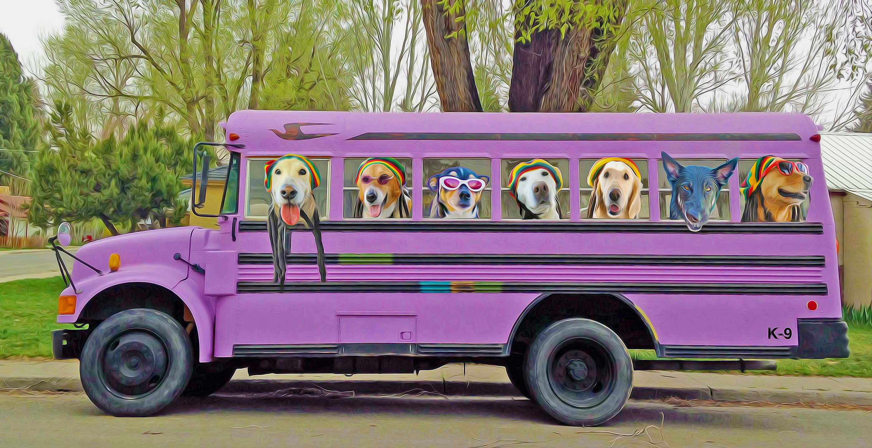 paint_purple bus with passengers