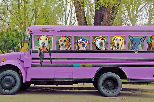 Dogs Can't Drive a Bus