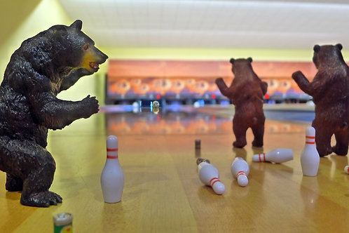 Bears, Beers, and Bowling