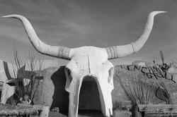 Longhorn Grill, AZ