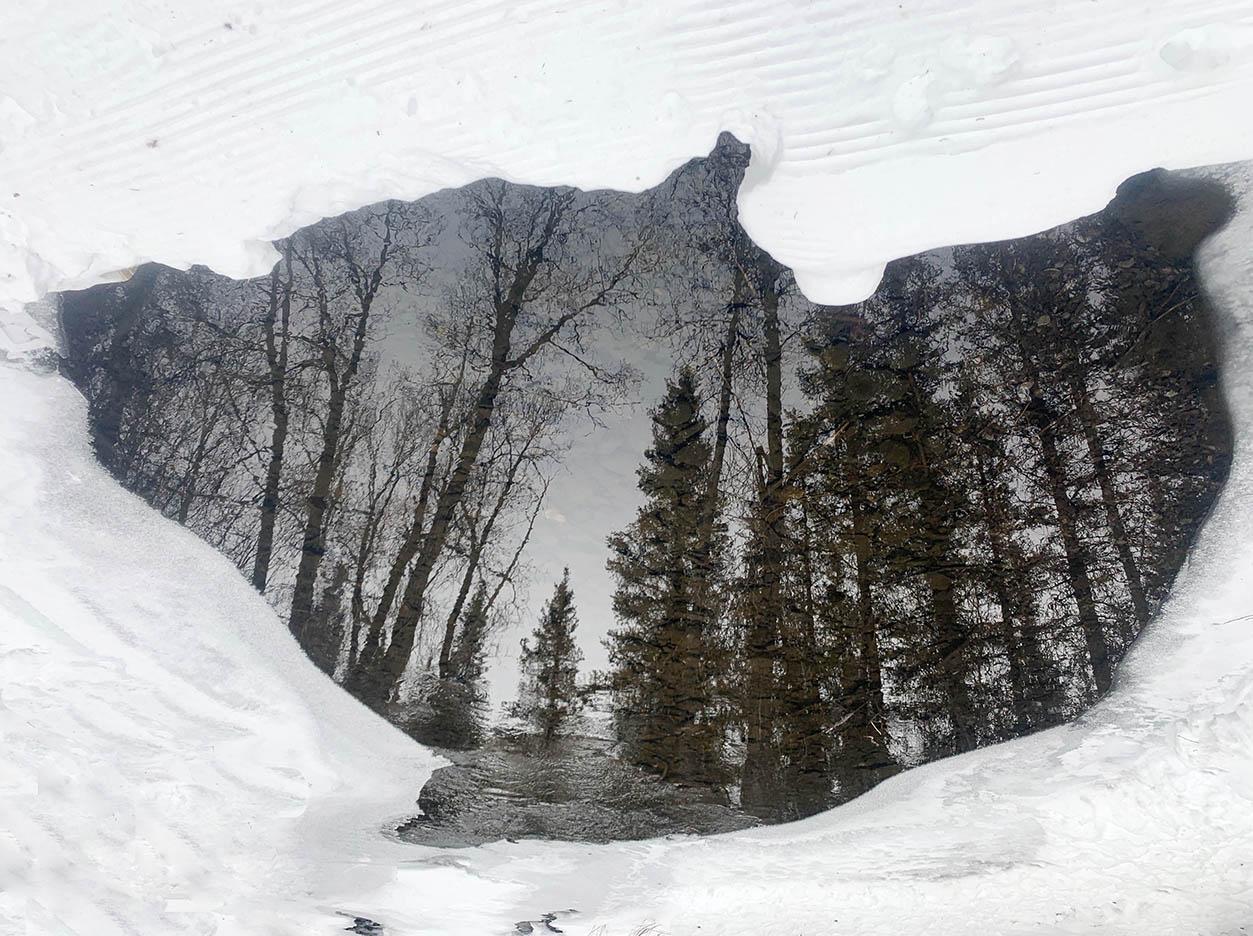 Portal, Telluride