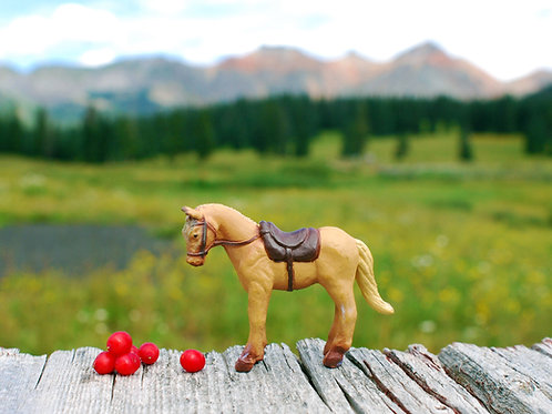 Red Berries, Red Mountain