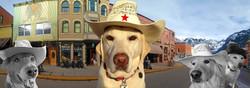 Sheriff Panoramic