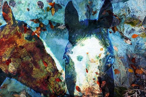 New Mexico Horses