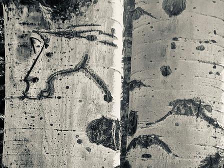 Horse Tree