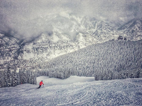 Red in White, Telluride by Su Baker