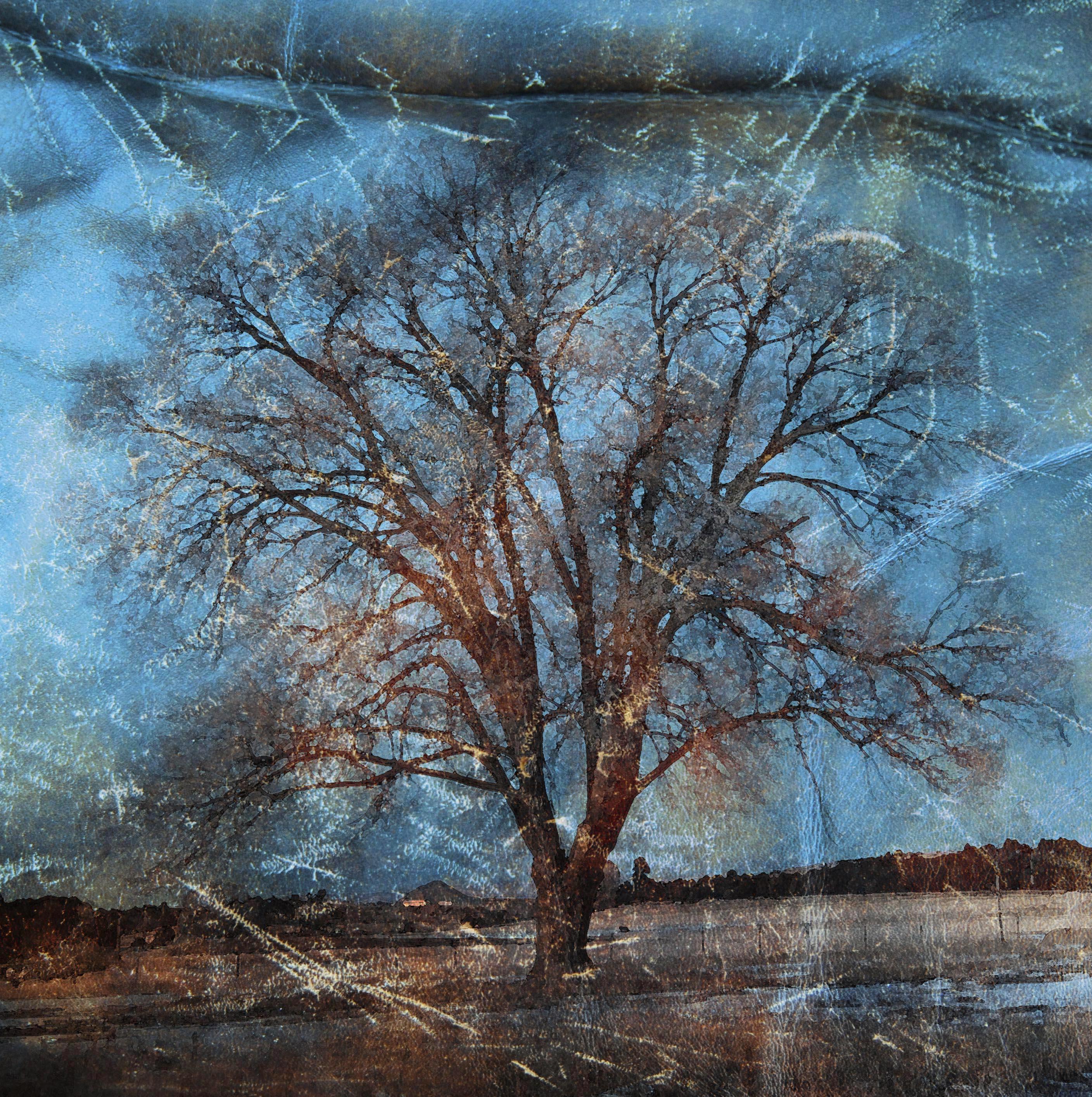 Lorelei Blue Tree