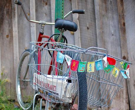 Daily Ride- Telluride