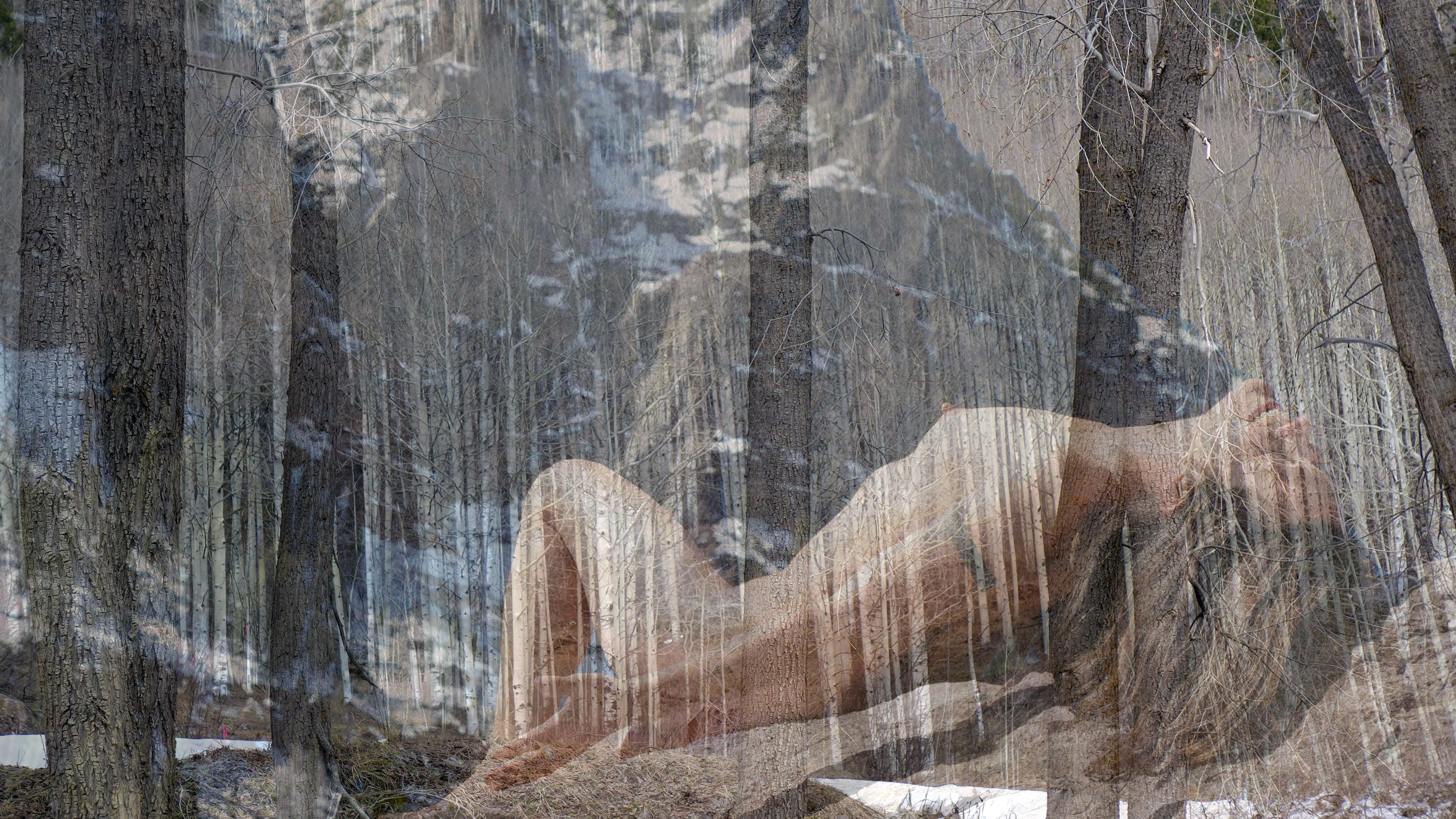 Lorelei Box Canyon
